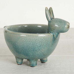Donkey Bowl
