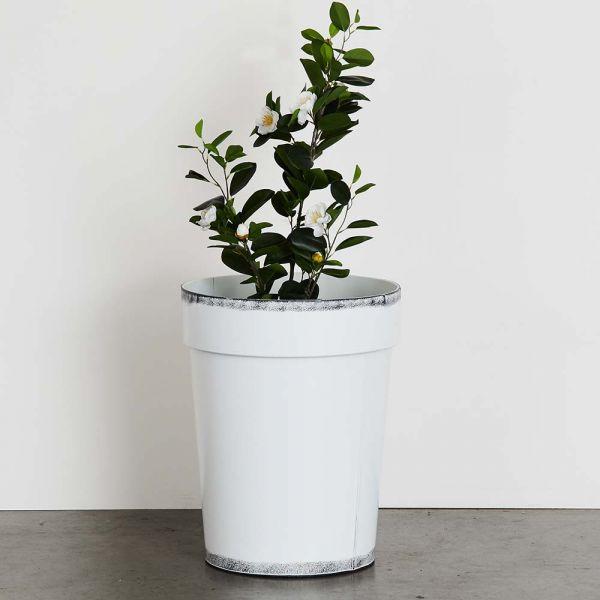Sardinia Planter