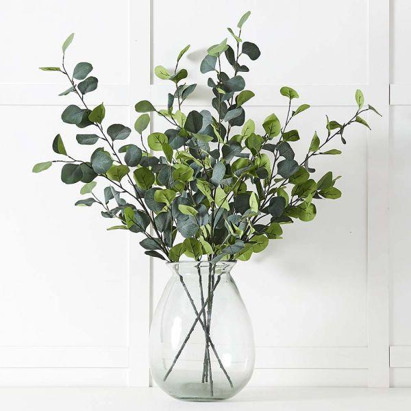 Silver Eucalypt Foliage