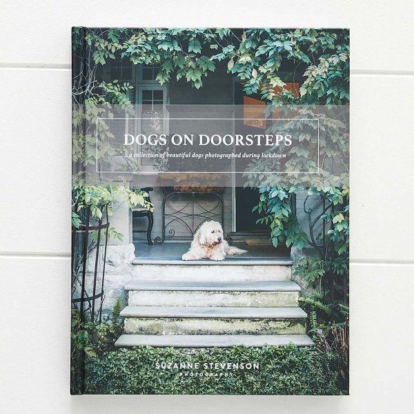 Dogs on Doorsteps