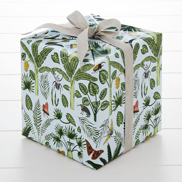 Beetle Wrapping Paper - 5m