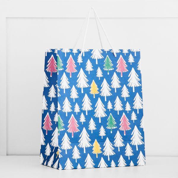 Jolly Fiesta Paper Gift bag