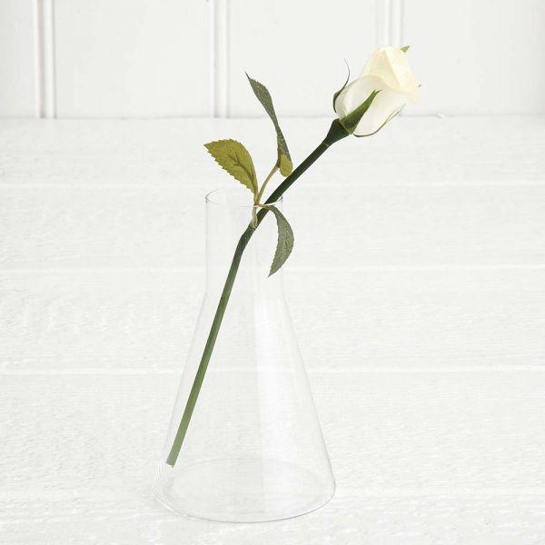 Scientifique Vase