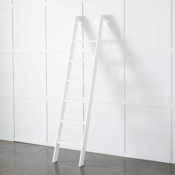 Obernai Library Ladder